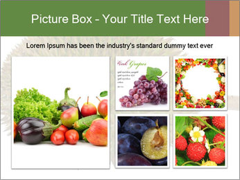 Durian PowerPoint Templates - Slide 19