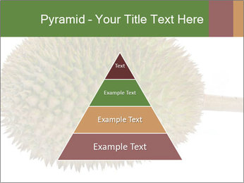 Durian PowerPoint Templates - Slide 30