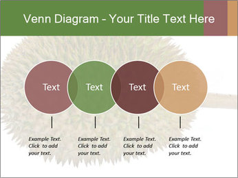 Durian PowerPoint Templates - Slide 32