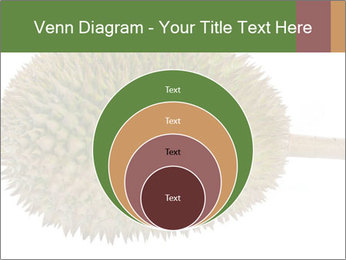 Durian PowerPoint Templates - Slide 34