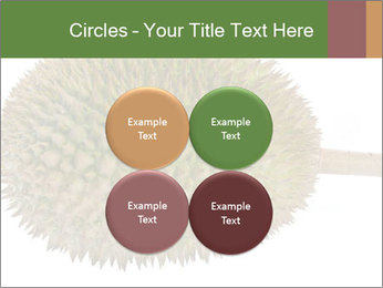 Durian PowerPoint Templates - Slide 38