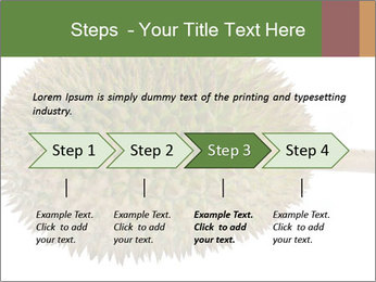 Durian PowerPoint Templates - Slide 4