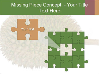 Durian PowerPoint Templates - Slide 45