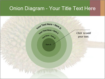 Durian PowerPoint Templates - Slide 61