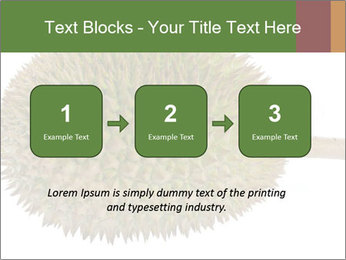 Durian PowerPoint Templates - Slide 71