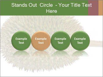 Durian PowerPoint Templates - Slide 76