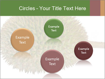 Durian PowerPoint Templates - Slide 77