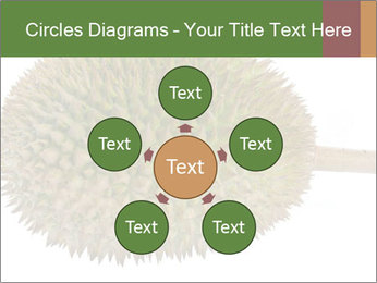 Durian PowerPoint Templates - Slide 78