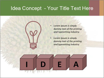 Durian PowerPoint Templates - Slide 80