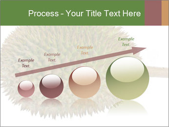 Durian PowerPoint Templates - Slide 87