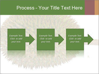 Durian PowerPoint Templates - Slide 88