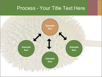 Durian PowerPoint Templates - Slide 91