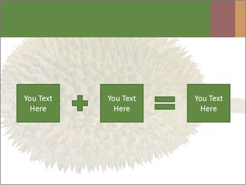 Durian PowerPoint Templates - Slide 95