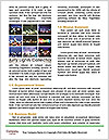 0000090676 Word Template - Page 4
