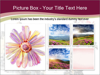 Bird and insects PowerPoint Templates - Slide 19