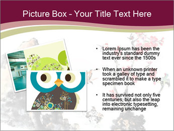 Bird and insects PowerPoint Templates - Slide 20
