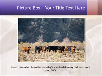 Brahman at sunrise PowerPoint Templates - Slide 16