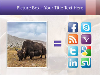 Brahman at sunrise PowerPoint Templates - Slide 21