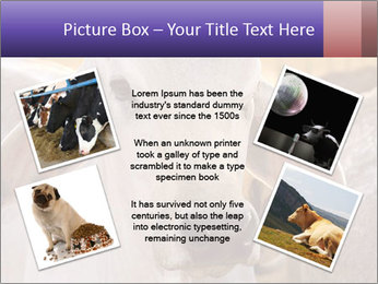 Brahman at sunrise PowerPoint Template - Slide 24