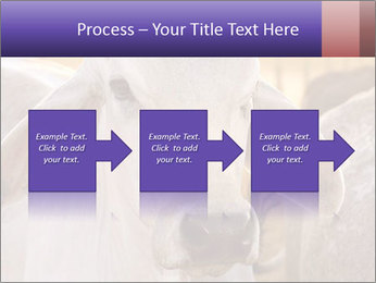 Brahman at sunrise PowerPoint Templates - Slide 88