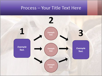 Brahman at sunrise PowerPoint Templates - Slide 92
