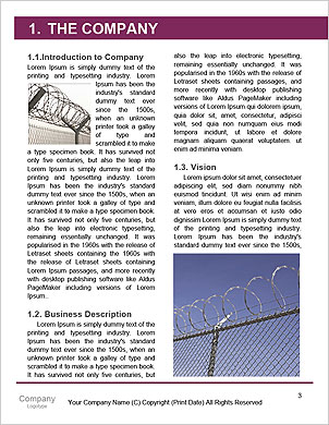 0000090697 Word Template - Page 3