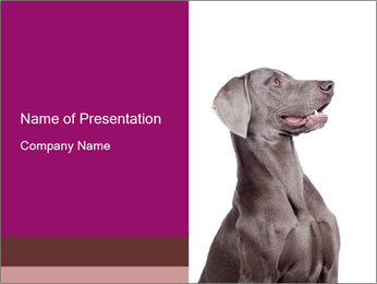 0000090704 PowerPoint Template