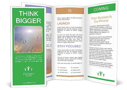 0000090708 Brochure Template