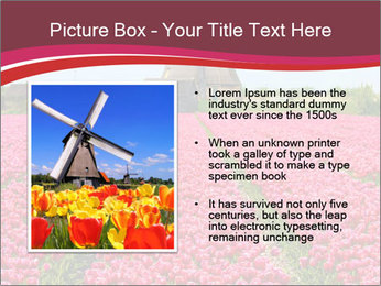 Rows of pink tulips PowerPoint Templates - Slide 13
