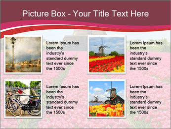 Rows of pink tulips PowerPoint Templates - Slide 14
