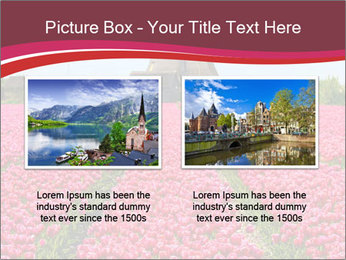 Rows of pink tulips PowerPoint Templates - Slide 18