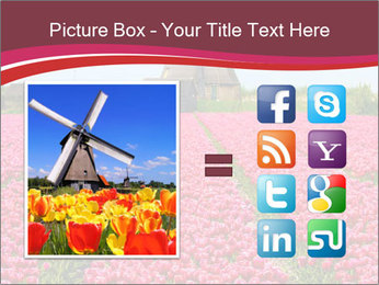 Rows of pink tulips PowerPoint Templates - Slide 21