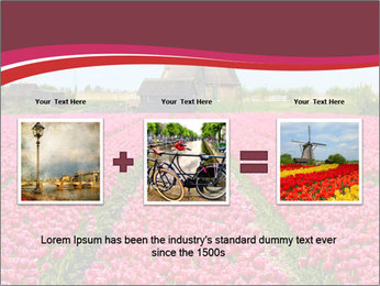 Rows of pink tulips PowerPoint Templates - Slide 22