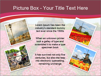 Rows of pink tulips PowerPoint Templates - Slide 24