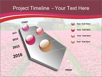 Rows of pink tulips PowerPoint Templates - Slide 26