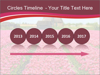 Rows of pink tulips PowerPoint Templates - Slide 29