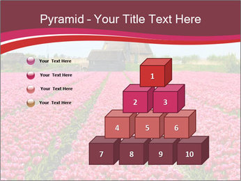 Rows of pink tulips PowerPoint Templates - Slide 31