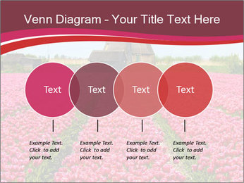 Rows of pink tulips PowerPoint Templates - Slide 32
