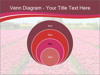 Rows of pink tulips PowerPoint Templates - Slide 34