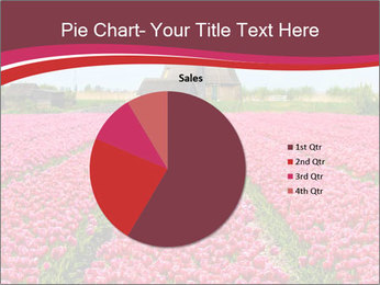 Rows of pink tulips PowerPoint Templates - Slide 36