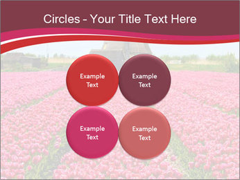 Rows of pink tulips PowerPoint Templates - Slide 38