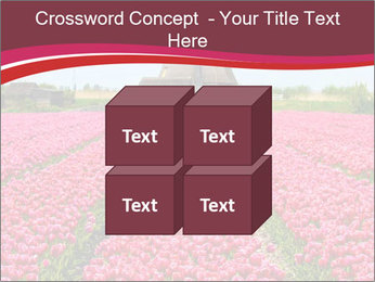 Rows of pink tulips PowerPoint Templates - Slide 39