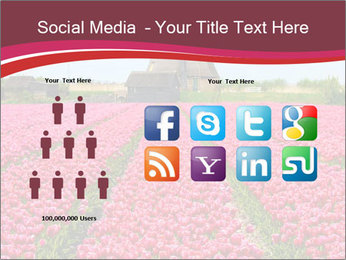 Rows of pink tulips PowerPoint Templates - Slide 5