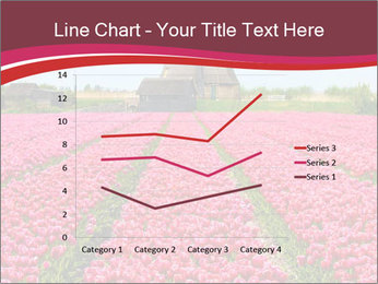 Rows of pink tulips PowerPoint Templates - Slide 54
