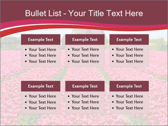 Rows of pink tulips PowerPoint Templates - Slide 56