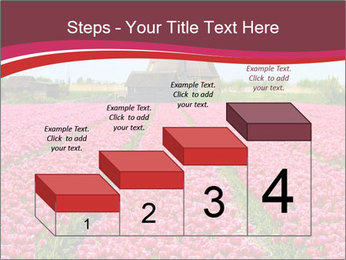 Rows of pink tulips PowerPoint Templates - Slide 64