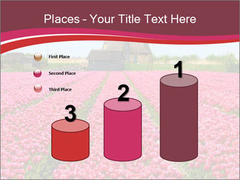 Rows of pink tulips PowerPoint Templates - Slide 65