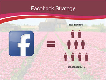 Rows of pink tulips PowerPoint Templates - Slide 7