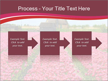 Rows of pink tulips PowerPoint Templates - Slide 88