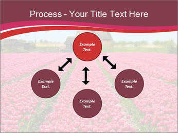 Rows of pink tulips PowerPoint Templates - Slide 91